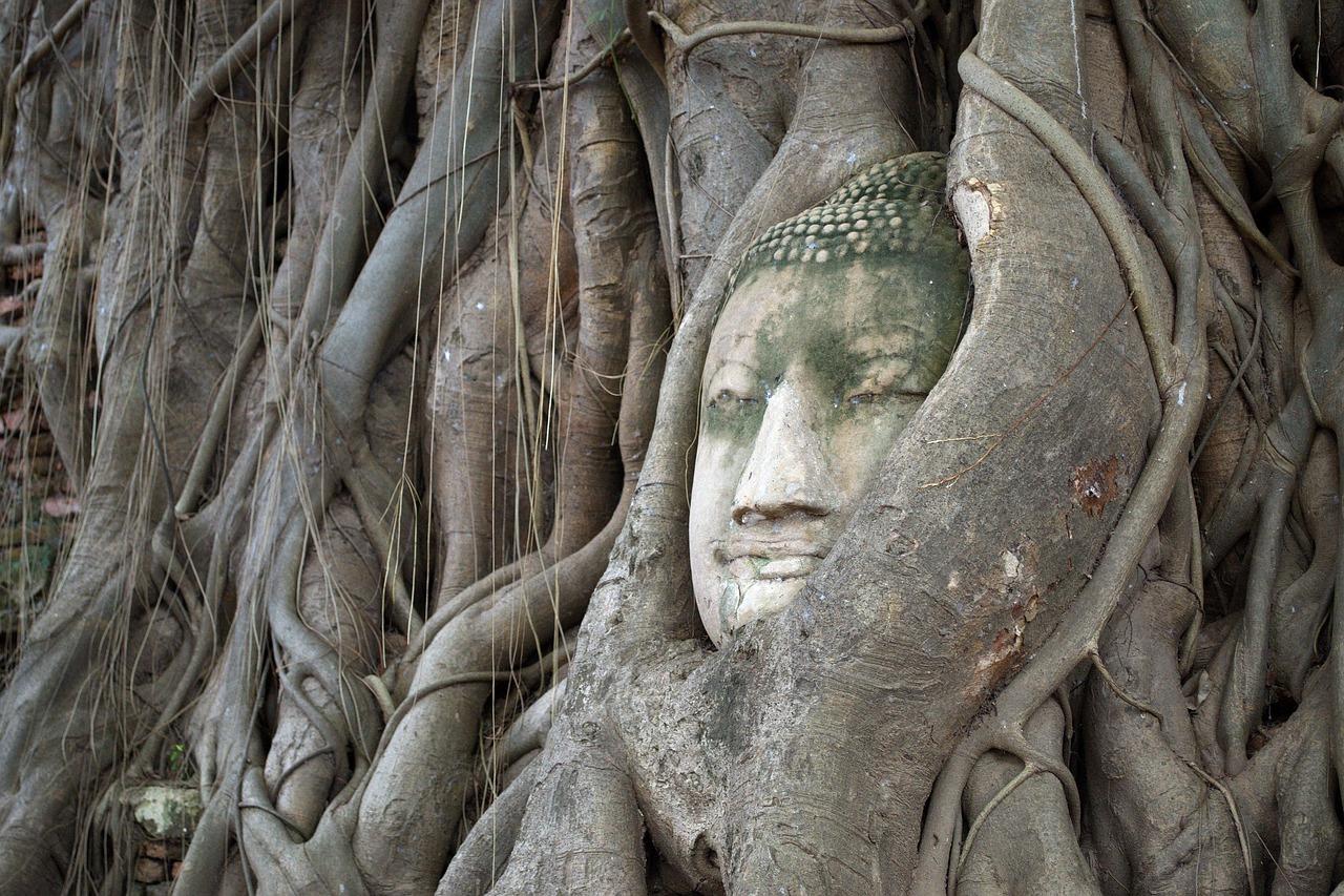 De paso por Ayutthaya #2